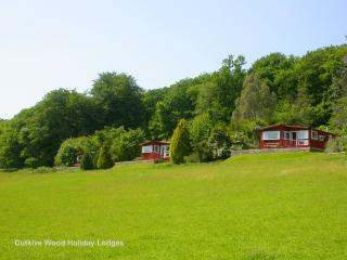 'Owl Lodge' at Cutkive Wood - Liskeard vacation rentals