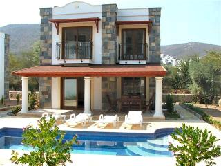 Nice Villa with A/C and Hot Tub - Torba vacation rentals