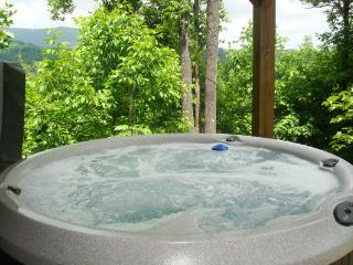 Mountain Laurel Lodge - Boone vacation rentals