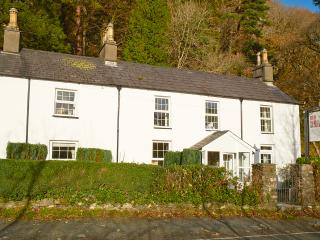 Comfortable 4 bedroom Beddgelert Cottage with Internet Access - Beddgelert vacation rentals