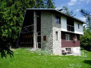 Beautiful Cottage with Internet Access and Satellite Or Cable TV - Tatranska Strba vacation rentals