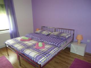 NICE HOUSE FOR 10 PEOPLE - Zagreb vacation rentals