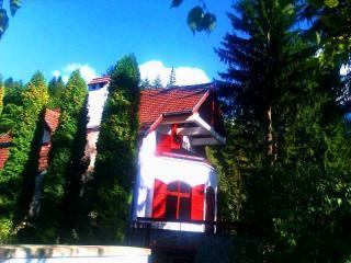 Le Chalet des Rêves - Sinaia vacation rentals