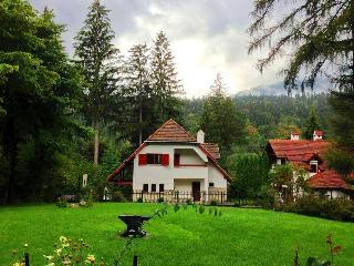 Comfortable Villa with Internet Access and Towels Provided - Sinaia vacation rentals