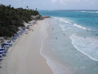 The Crane Resort - Saint Philip vacation rentals