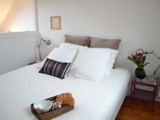 LEONARDO Apt, Loft Style, 2/4 - Amboise vacation rentals