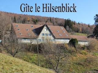 Appart avec terrasse Belle vue - Linthal vacation rentals