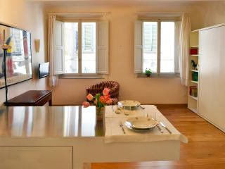 Ideally located Florence centre studio - Florence vacation rentals