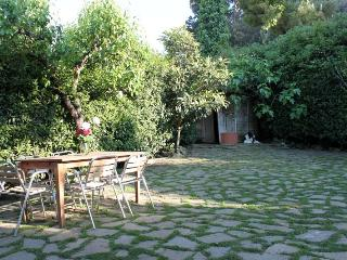 Pets friendly! paceful place with private garden. - Antignano vacation rentals