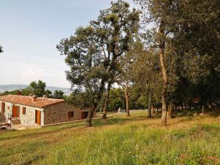 Appartamento in Val D'Orcia - Vista Bosco - Radicofani vacation rentals