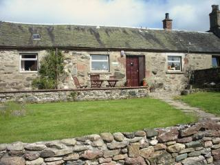 Marigold Cottage Pondfauld Holidays - Blairgowrie vacation rentals