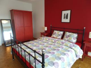 The SC1 Apartment by Castaway Lodgings - Geneva vacation rentals
