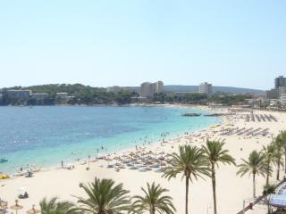 MAGALUF STRIP COMPLEX BUILDING - Magalluf vacation rentals