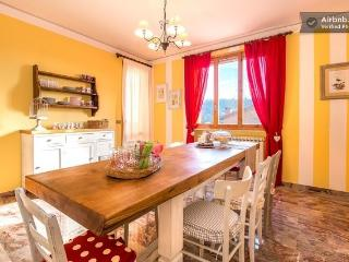 Convenient Bed and Breakfast with Wireless Internet and Long Term Rentals Allowed (over 1 Month) - Castelvetro di Modena vacation rentals