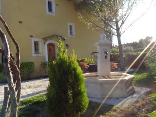 Villa Victoria 1 in sunny Provence - Lorgues vacation rentals