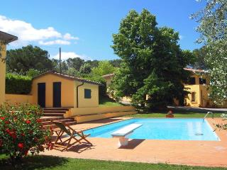 villa between Florence-Siena - Poggibonsi vacation rentals