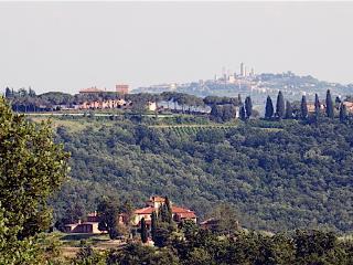 Charming 1 bedroom Apartment in Gambassi Terme - Gambassi Terme vacation rentals