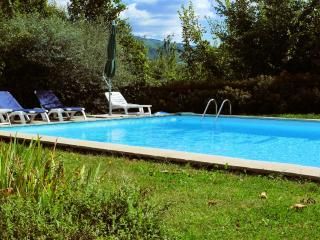 La Pallunga, pool, fine food - San Romano in Garfagnana vacation rentals