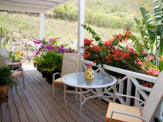 2 bedroom Condo with Internet Access in Jolly Harbour - Jolly Harbour vacation rentals