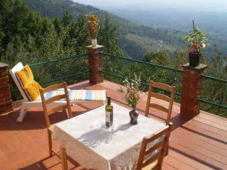 Wonderful Tuscan holiday cottage in Barfoli with terrace and amazing view - Reggello vacation rentals