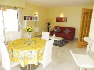 Marie Antoinette Delux 2 Bedroom with Sea View from Terrace - Cannes vacation rentals