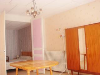 Nice 21 bedroom Bourbonne-les-Bains Resort with Internet Access - Bourbonne-les-Bains vacation rentals