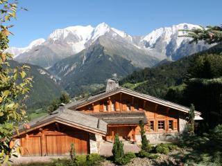Perfect 1 bedroom Saint Gervais les Bains Chalet with Internet Access - Saint Gervais les Bains vacation rentals