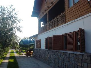 Bright 4 bedroom Prahova County Villa with Internet Access - Prahova County vacation rentals