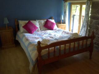 Chevrefeuille 9 person cottage - Sains vacation rentals