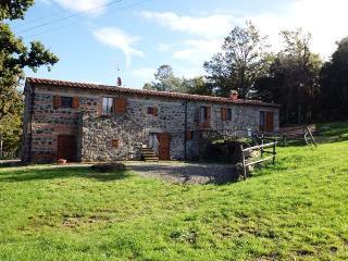 Appartamento con Vista Colline in Val D'Orcia - Radicofani vacation rentals