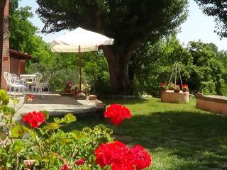 """casale """"gli ulivi di terrarossa - Pisa vacation rentals"""