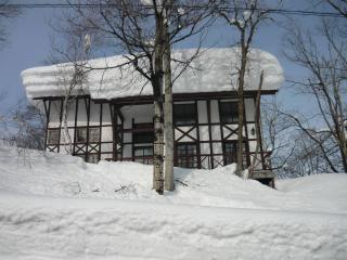 Nice Lodge with Deck and Internet Access - Myoko vacation rentals