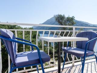 Studio apartment in Sobra, Mljet!!! - Sobra vacation rentals
