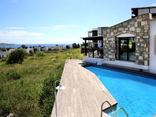 422-Bodrum Ortakent Villa 10px - Ortakent vacation rentals