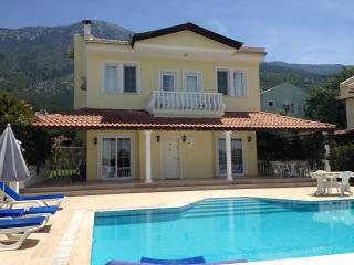 Comfortable 4 bedroom Villa in Ovacik - Ovacik vacation rentals