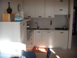 2 bedroom Condo with Dishwasher in Monteverdi Marittimo - Monteverdi Marittimo vacation rentals