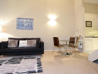 SUPERB LOCATION NR THAMES/ST P - London vacation rentals