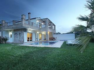 Elmas Dream Villas - Nea Kydonia vacation rentals