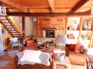 Large mountain retreat in the French southern Alps - Seyne les Alpes vacation rentals
