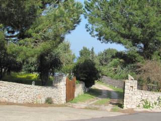 4 bedroom Villa with Toaster in Alessano - Alessano vacation rentals