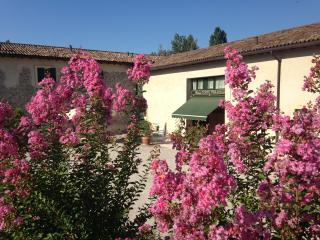 Confortable 3 bedrooms 1st floor - Peschiera del Garda vacation rentals