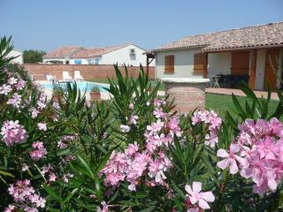 3 bedroom Villa with Satellite Or Cable TV in Gaillac - Gaillac vacation rentals