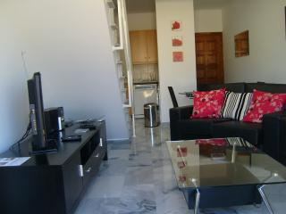 Nice 1 bedroom Penthouse in Argaka - Argaka vacation rentals