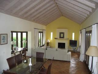 Spacious 4 bedroom Sotogrande Villa with Internet Access - Sotogrande vacation rentals