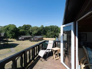 Comfortable 3 bedroom New Milton Lodge with Internet Access - New Milton vacation rentals