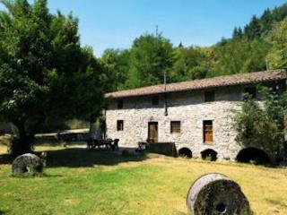 Il Vecchio Mulino, Restored watermill,private pool - Coreglia Antelminelli vacation rentals