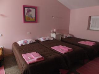 Quinta de Santa Maria. Piscina interior. 16pessoas - Agueda vacation rentals