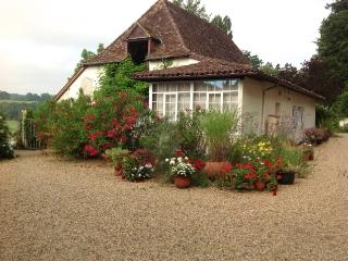 Courtyard Cottage - Salies-de-Béarn vacation rentals