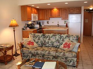 Nice 1 bedroom Maunaloa Apartment with Garden - Maunaloa vacation rentals