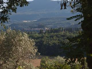 Podere Poggiosecco - CETONA COUNTRY HOUSE - Cetona vacation rentals